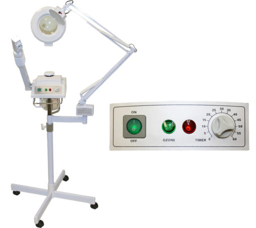 2 in 1 facial steamer and maglamp