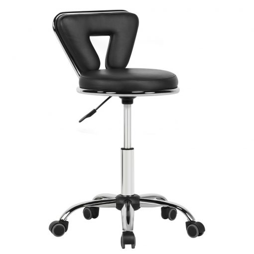 Modern Salon Stool with Back Support